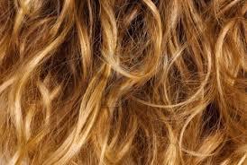 Európai haj